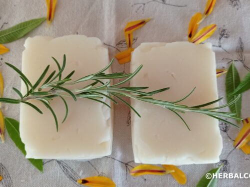 2 white soap bars made with coconut oil, decorated with rosemary and yellow flower petals